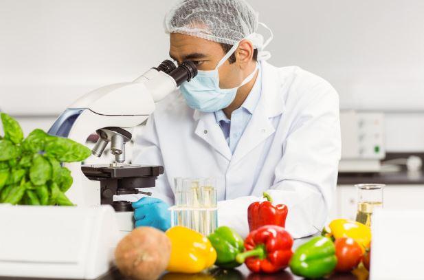 Ley de Seguridad Alimentaria y Nutrición