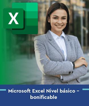 Microsoft Excel Nivel básico